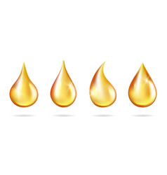 Shine yellow droplets realistic oil drops vector