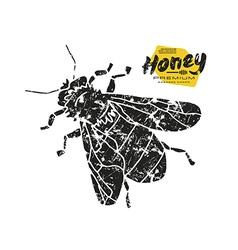 Stock of honey bee vector