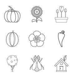 sunflower icons set outline style vector image