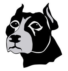 pit bull vector image