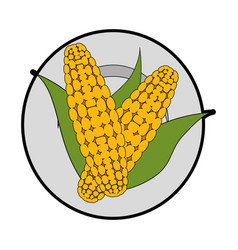 isolated two corn symbol vector image