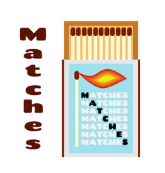flat of matchbox with matches box with matchsticks vector image
