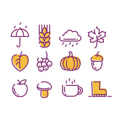 cute linear autumn icons set vector image vector image