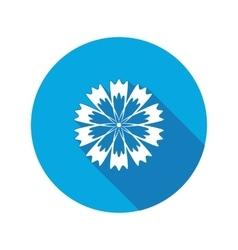Spring floral icon Cornflower blue poppy vector