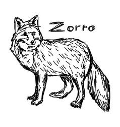 Zorro standing - sketch hand drawn vector