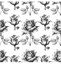 Black and white seamless pattern hand drawn roses vector