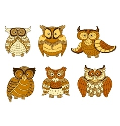 Brown and yellow spotted forest owl birds vector