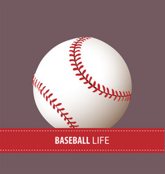 close up baseball ball vector image
