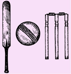 Equipment cricket bat ball wicket vector