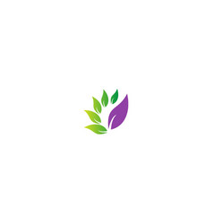 green leaf abstract logo vector image