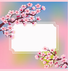 template greeting card with blossoming branches vector image