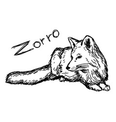 Zorro lying - sketch hand drawn vector