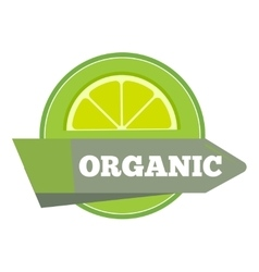 Organic natural fruit juice label template vector image vector image