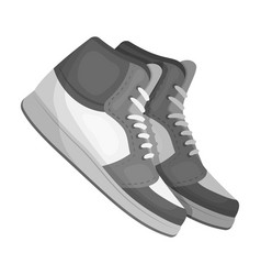 basketball shoesbasketball single icon in vector image