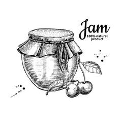 cherry jam glass jar drawing fruit jell vector image