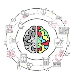 icons of human brain activity vector image