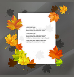 white blank decorated with colorful autumn maple vector image vector image
