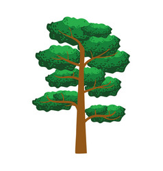 pine tree element of a landscape colorful vector image vector image