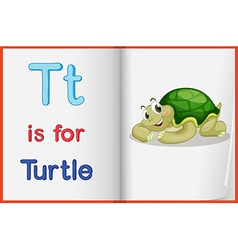 A picture of turtle in book vector
