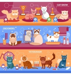 Cats banner set vector
