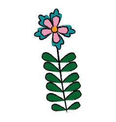 flower tropical flora beauty nature decoration vector image