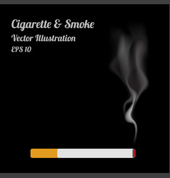 Isolated cigaratte and smoke on black background vector