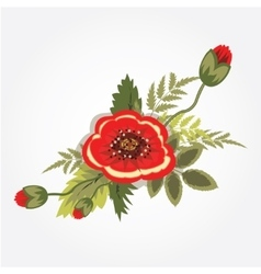Red poppy bunch bouquet boutonniere floral vector