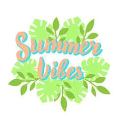 summer vibes lettering with tropical leaves vector image