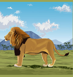 Colorful scene african landscape with lion vector
