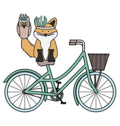 cute fox and owl with feathers hat in bicycle vector image