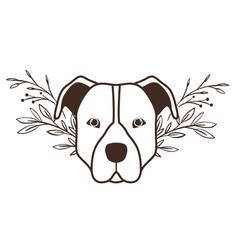 Cute pitbull dog on white background vector