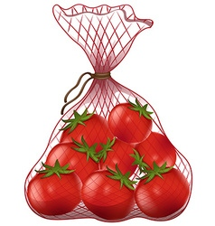 Fresh tomatoes in net bag vector