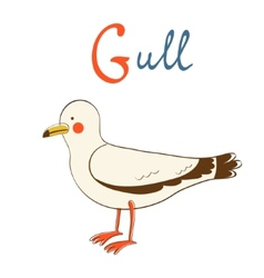 G is for Gull vector image vector image