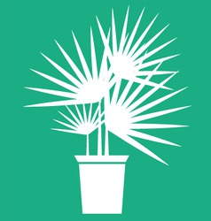 houseplant vector image