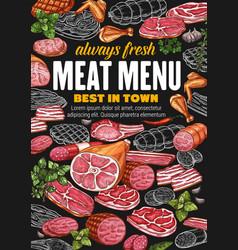 Meat sausages pork beef ham salami bacon vector