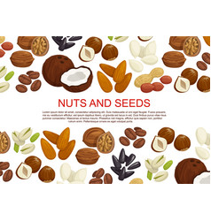 Nuts and fruit seeds sweets poster vector