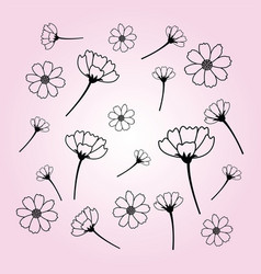 sweet cosmos flowers hand drawn black flower vector image