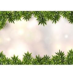 Fir christmas background vector image