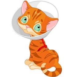 Sick Cute Kitten vector image