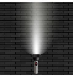 White Beam of Light vector image