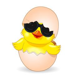 cute chicken in black sunglasses vector image