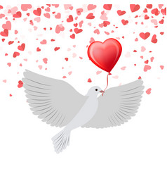 dove with balloon in beak isolated on background vector image