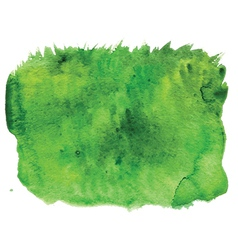 Grass watercolour vector