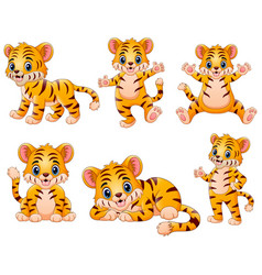 Happy tiger cartoon set collection vector