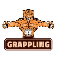 tiger grap 0001 vector image