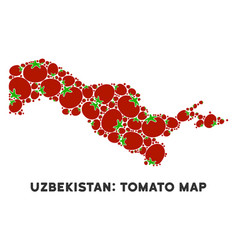 Uzbekistan map composition of tomato vector