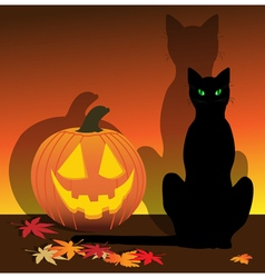 Jack and Cat vector image