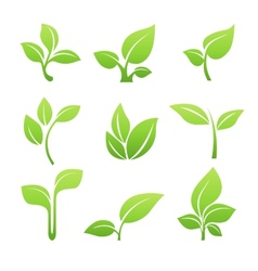 Green sprout symbol icon set vector image