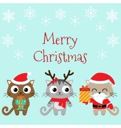 Christmas family of cats vector image