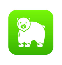 canadian bear icon green vector image